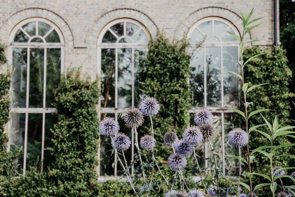 Skane Schweden Tipps Lund Botanischer Garten
