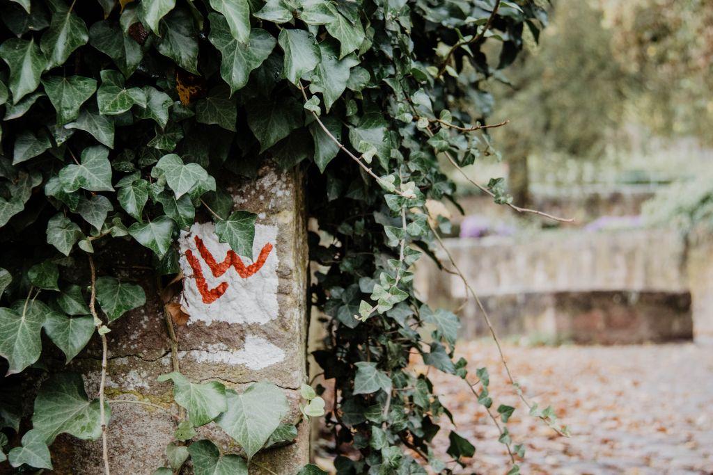 Schöne, ausgeschilderte Wanderrouten führen durch und um Marburg.